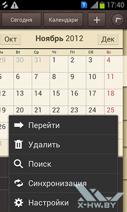 Календарь на Samsung Galaxy S Duos. Рис. 1