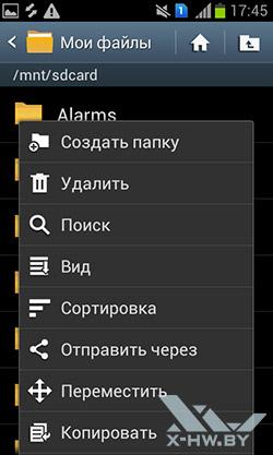 Менеджер файлов на Samsung Galaxy S Duos. Рис. 3
