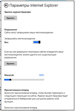 Параметры Metro-версии Internet Explorer 10 в Windows RT. Рис. 1