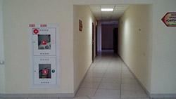 Пример съемки тыльной камерой Highscreen Zera S. Рис. 5