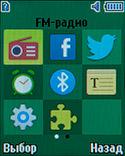Настройки Samsung Metro 312. Рис. 2