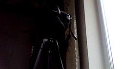 Пример съемки камерой Lenovo Flex 2. Рис. 1