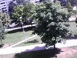 Пример съемки с тыльной камеры Senseit R390+. Рис. 2