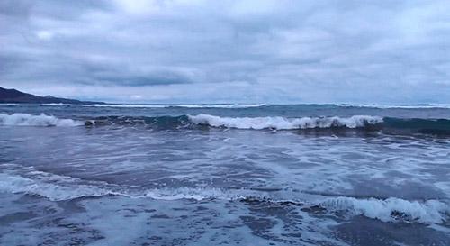 Пример Freemore Video to GIF Converter. Рис. 1