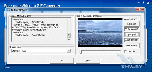 Freemore Video to GIF Converter. Рис. 2
