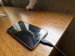 Пример съемки лицевой камерой Samsung Galaxy A7 (2016). Рис. 3
