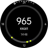 Приложение S Health на Gear S3. Рис 2