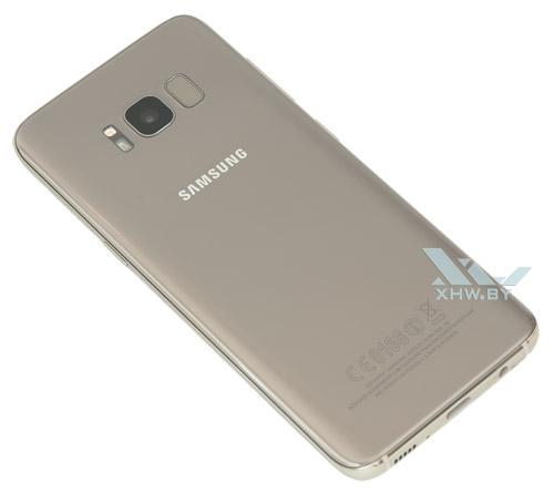 Samsung Galaxy S8. Вид сзади