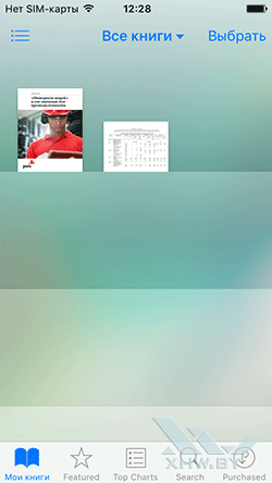 PDF в iBooks на iPhone. Рис 2