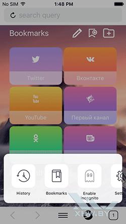 Браузер Спутник на iPhone. Рис 2