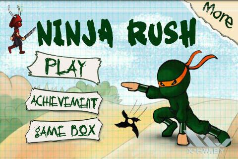 Ninja Rush. Рис. 1