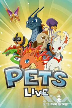 Pets Live. Рис. 1