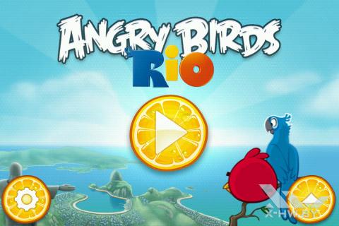 Angry Birds Rio. Рис. 1