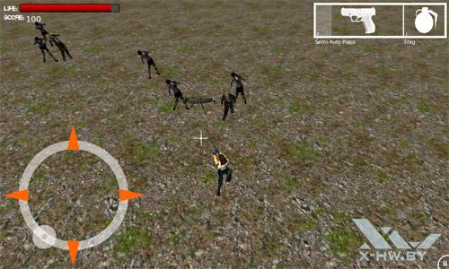 Zimbie Field HD. Рис. 1