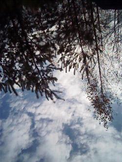 Пример съемки фронтальной камерой HTC Radar. Рис. 1