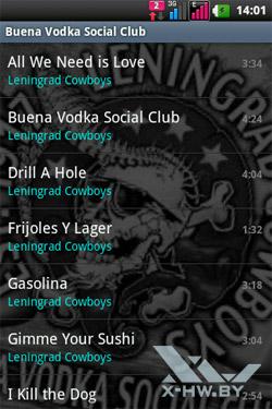 Список альбомов на LG Optimus Net Dual P698