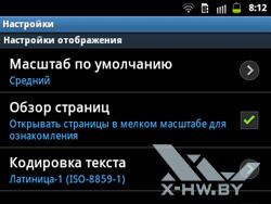 Настройки браузера на Samsung Galaxy Y Pro Duos. Рис. 3