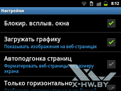 Настройки браузера на Samsung Galaxy Y Pro Duos. Рис. 4