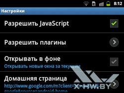 Настройки браузера на Samsung Galaxy Y Pro Duos. Рис. 5