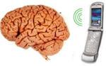 Белорусские ученые разработали устройство защиты от излучения мобильных телефонов