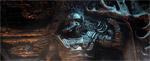 Elder Scrolls 5 выйдет в 2011 году